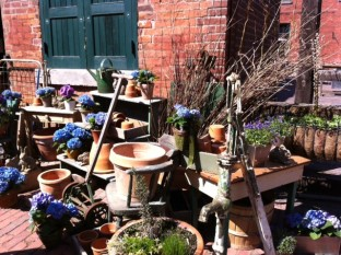 It's already spring in the Distillery District!